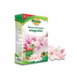 Trąšos magnolijoms Planta,...