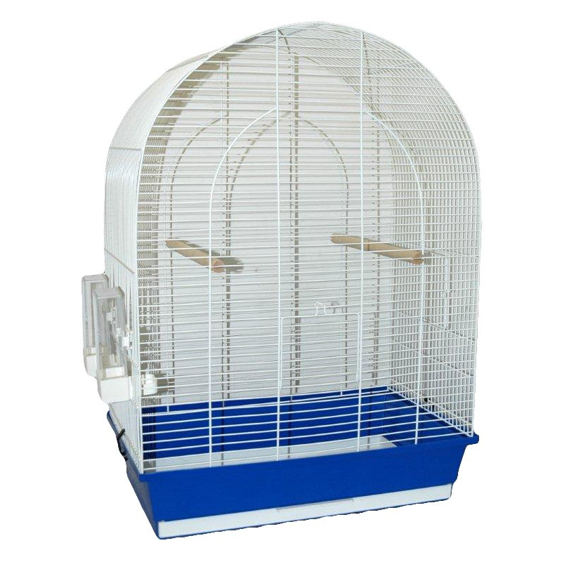 Narvelis paukščiams - Big Lucie
