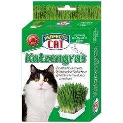 Perfecto Cat Katzengras - žolė katėms 100g