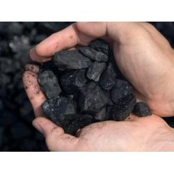 Plauta akmens anglis