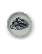 Plauta anglis
